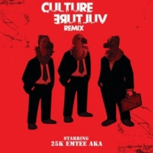 25k - Culture Vulture (Remix) Ft. AKA & Emtee